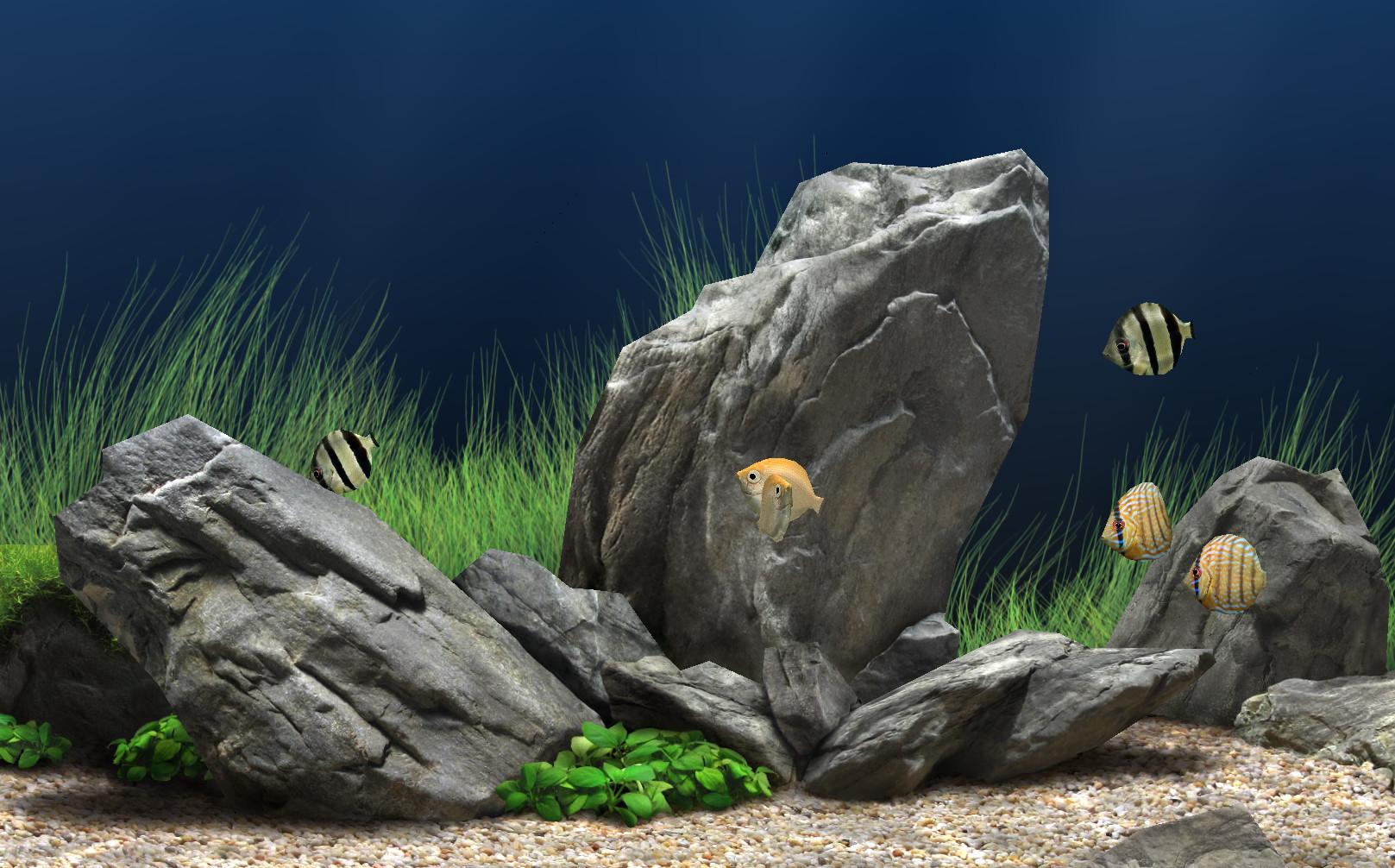 梦幻水族馆屏幕保护(Dream Aquarium)1.234 绿