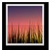 安卓动态壁纸选择器2.1 官网最新版