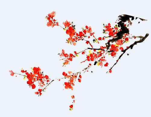 18种水墨梅花素材图片集锦png格式免费版