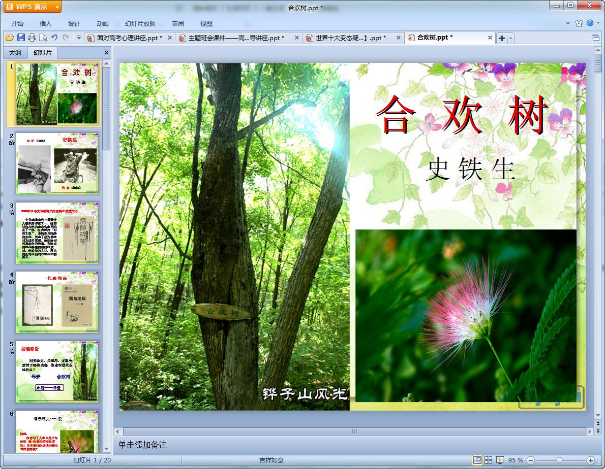 合欢树教学课件白玉兰奖绽放图片