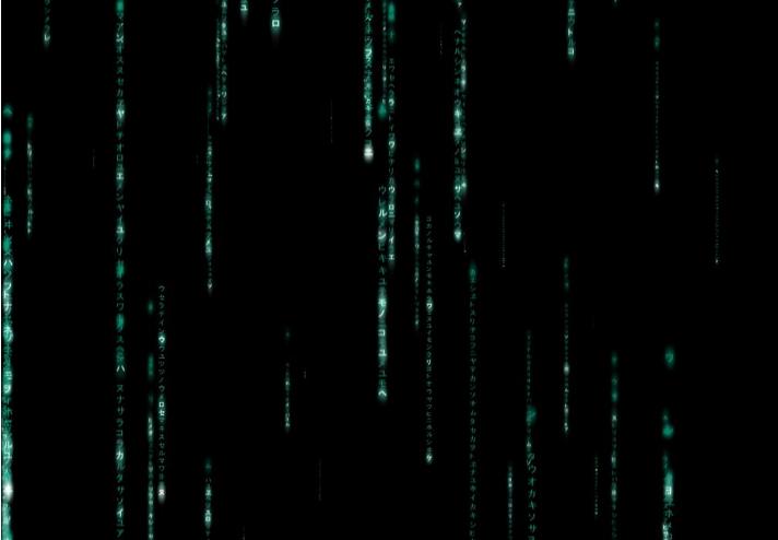 黑客帝国鲫鱼雨屏保刚放的数字怎么钓法图片
