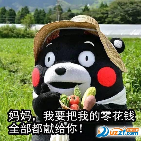 熊本熊母亲节祝福语表情好不好_熊本熊图片微信上啪啪的图片图片母亲大全大全表情图片